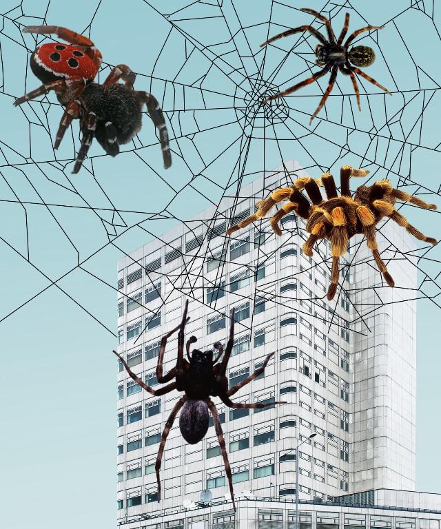 #freetoedit #spiderinvasion