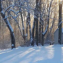 freetoedit snow winter blowingsnow beautiful