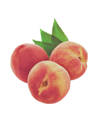 Peach Aesthetic Vaporwave Tumblr Cute Orange Pink Fruit