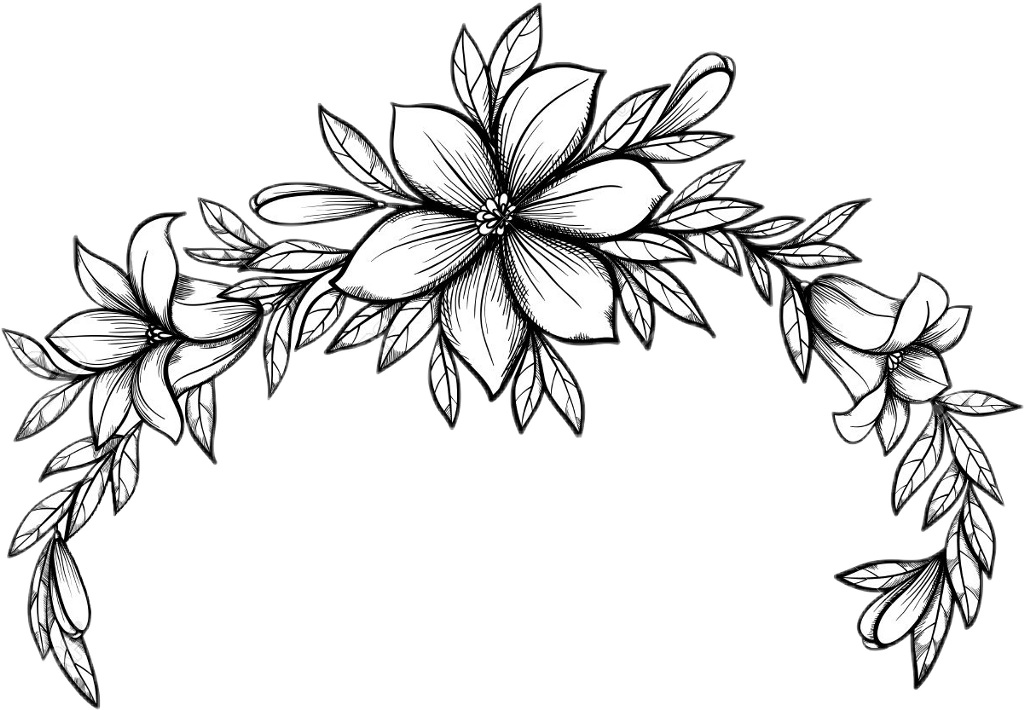 Blackandwhite Lineart Outline Flowers Floral Flowercrow