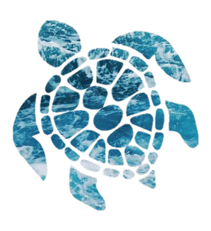 Turtle Summer Blue Animals Tumblr Sticker