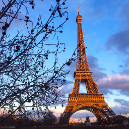 paris eiffeltower trees photography freetoedit pcmyday pcmonumentsandsites pcthroughmylense pcthebestplace