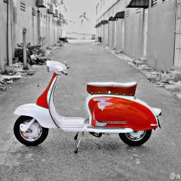 scooter moto picsart b&w bw freetoedit