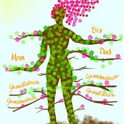 dcmyfamilytree myfamilytree