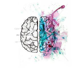 imadeit mydraw brain talent