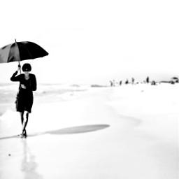 pcumbrellas umbrellas freetoedit assateagueisland beach