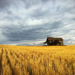 farm farmlife challenge freetoedit