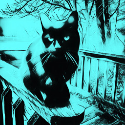 freetoedit catart picsarteffects blackandwhite