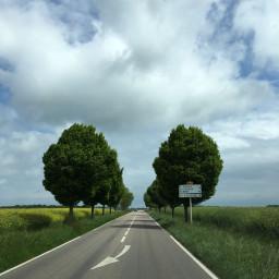 freetoedit road trees landscape sky