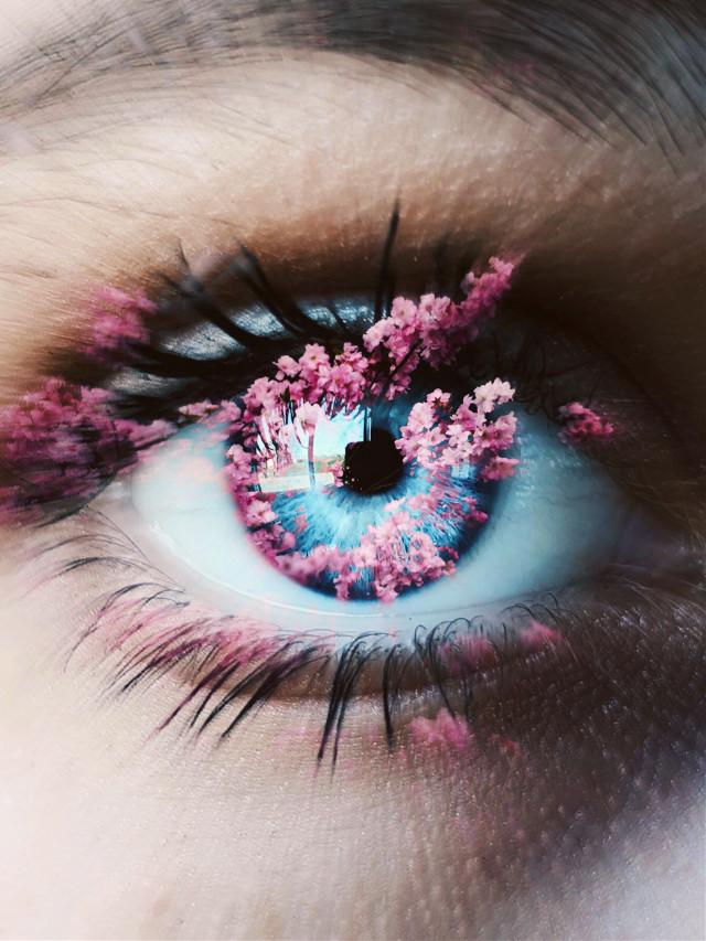 #freetoedit Remix it! Instagram: dreaming.cloudd link in bio #freetoedit #elephant #remixit #photography #summer #moon #interesting #art #beach #italy #nature #night #galaxy #travel #netherlands #photo #picsart @picsart  @freetoedit #eye #blueeyes #closeup