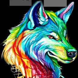 freetoedit collorfull wolf like follow