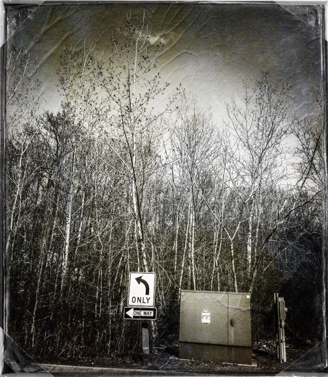 Parking area #Information #Direction #ElectricBox #Park #Woodland #Vegetation #Foliage #Background #Landscape #Emoji #Quiet #Tranquil #Monochrome #Black-and-whiteShot #SkyPerfection #MyPhotography #Desktop #PhotoFrame #Signs #iPhone8Plus #CameraFilters#EditWithFilterra