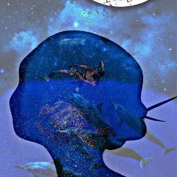 freetoedit silouett remembering divingday bluemoon