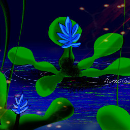 dclilypad lilypad mydrawing madewithpicsart myimagination