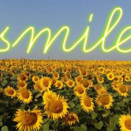 freetoedit remixed smile sunflowers sunflowerremix