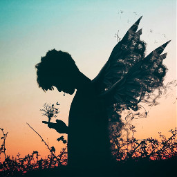 freetoedit surreal ecsurreal silhouette boy