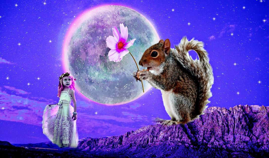 #freetoedit #girl #squirrel #curvestool
