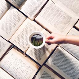 freetoedit coffe woods book books