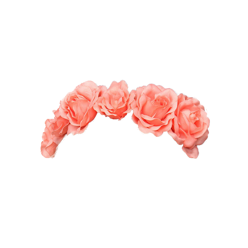 Crown Pink Pastel Tumblr Flowercrown Kawaii Flower