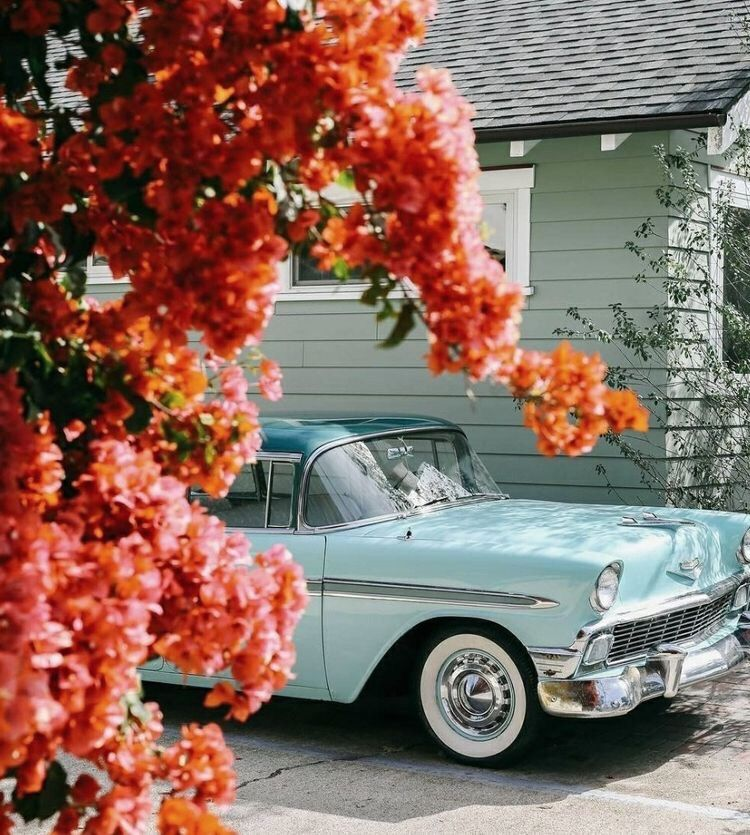 Vintage Cars Flowers Wallpaper 50s Aesthetic