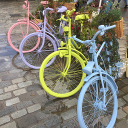 bycicle colorful picturoftheday cute