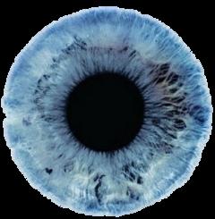 freetoedit blue eyes edit sticker