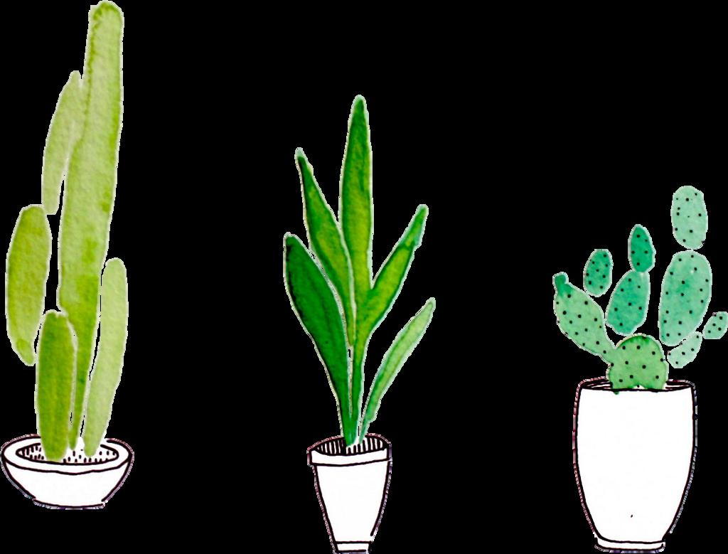 plants tumblr aesthetic sticker by toruu