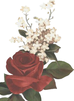 shawnmendes youth flowers freetoedit