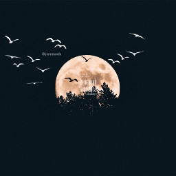 surreal sillouette blackandwhite moon trees srcblackbirds freetoedit