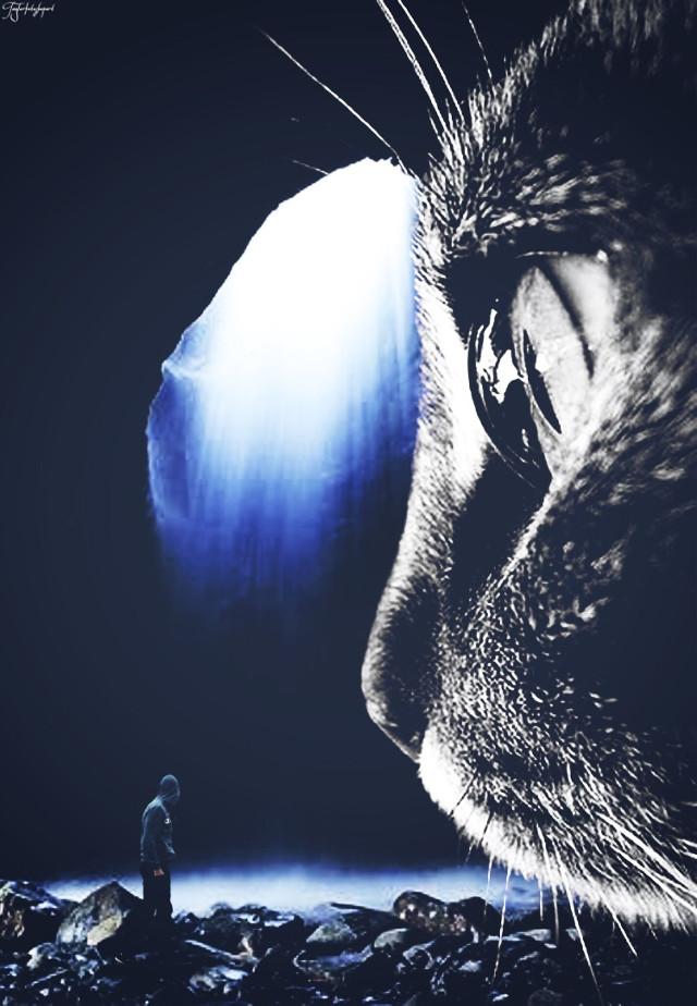 #freetoedit #giantanimals #manipulation #explore #surreality #editedbyme #madewithpicsart #manipulation #cat