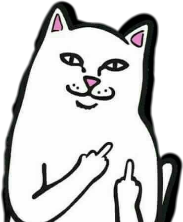 #middle finger cat meme