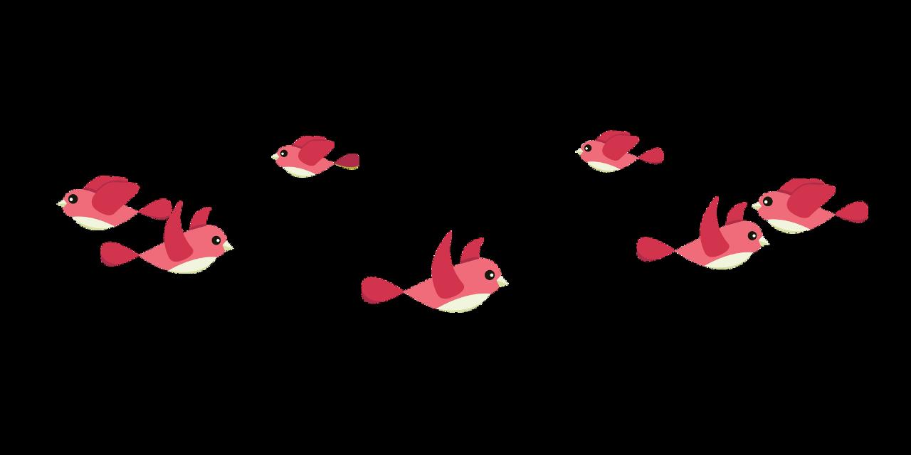 #freetoedit #freesticker #red #birds #birdcrown #sticker #pink #remixit #freetoedit