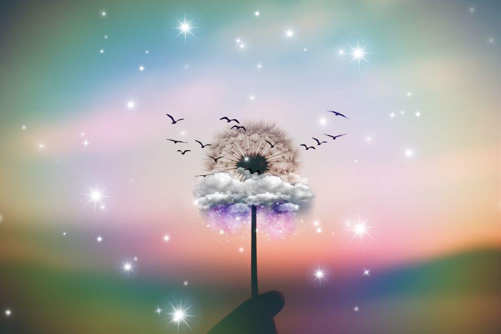 #freetoedit #dandelion #birds #remixit #art #beautiful #nature