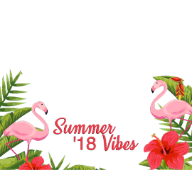 summer vibes flamingo freetoedit