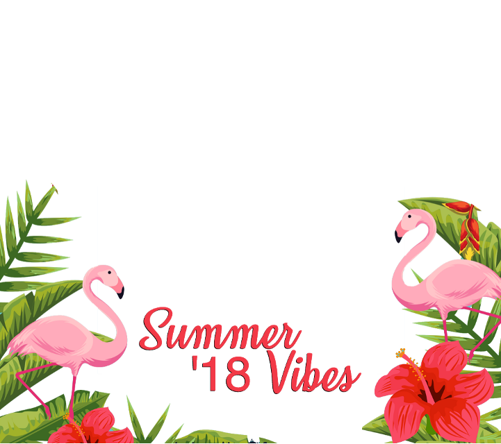 #summer #vibes #flamingo #freetoedit