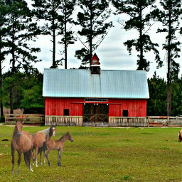 freetoedit barn horse farm farmanimals pcfacades