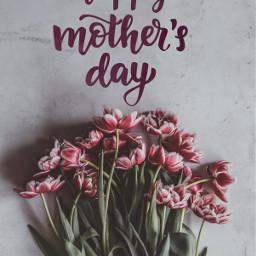 freetoedit mothersday happymothersday mom flowers