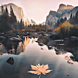 freetoedit beautifulnature