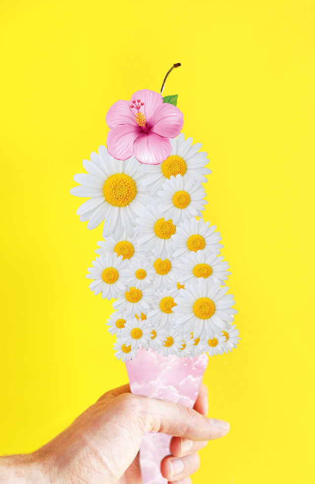 Ummm ice creame...?😂😂 #icey #pinksky #flowers