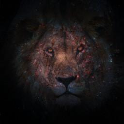 freetoedit lion galaxy blackhole mysterious