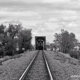 train bnw traintrack