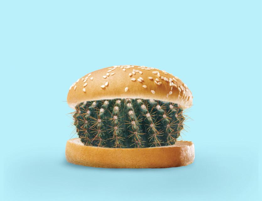 Cactus burger! 🍔🌵 #freetoedit #burger #hamburger #cactus #weird #irchamburgerbun #hamburgerbun