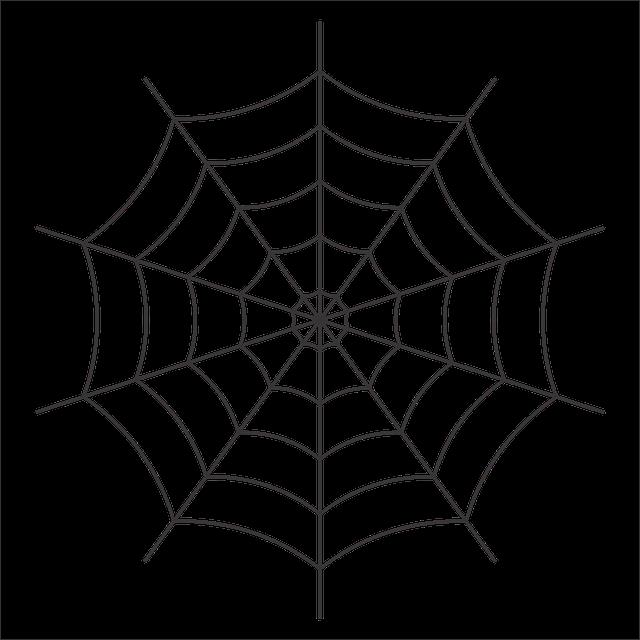 #sticker #freetoedit #spiderweb #spider #web #halloween #spooky #scary