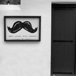 mustache staugustinefl