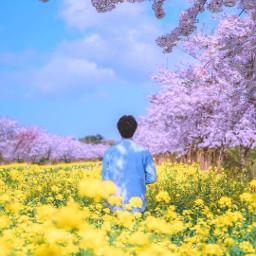 photographer photography boy blooming korea freetoedit