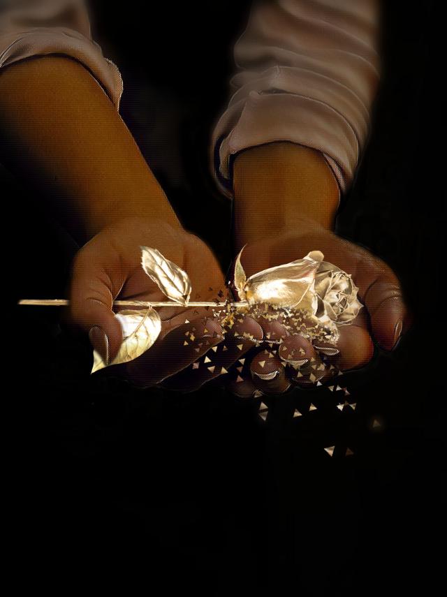 #picsartpassion #hands #gold #rose