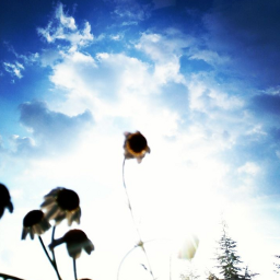 daisyflower sky bluesky spring summer freetoedit