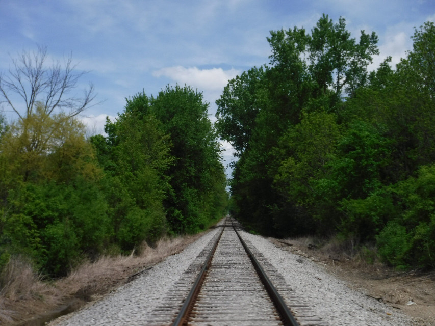 The long road to nowhere...   #railroad #track #distance #railroadtrack #freetoedit #remixit