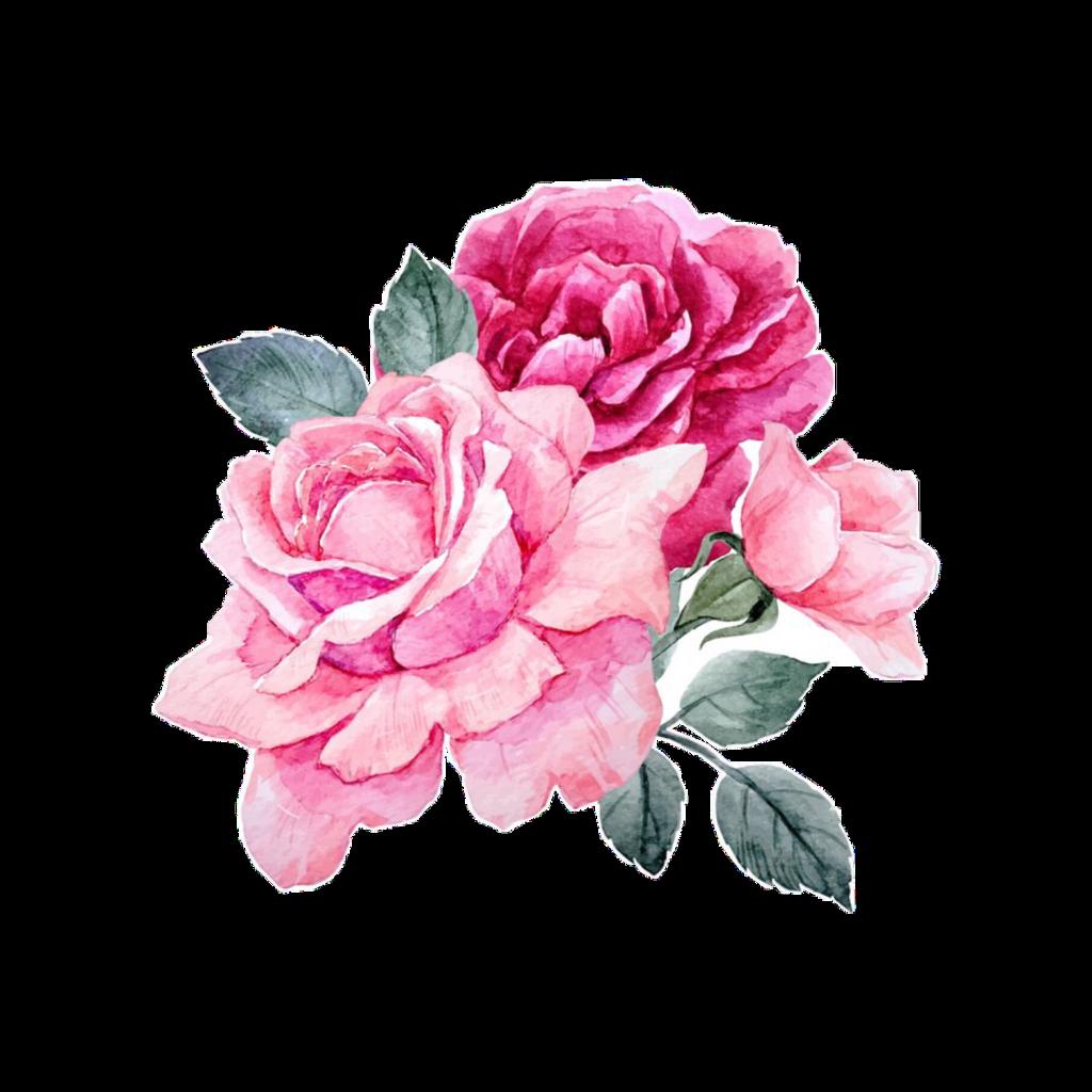 Flower Flower Aesthetic Gif Png