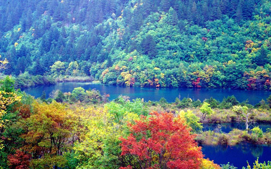 #lake #Tibetanareainchina #landscape #autumn